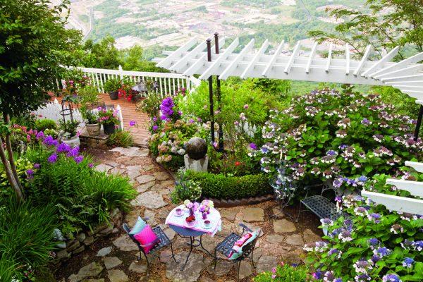 Chattanooga garden