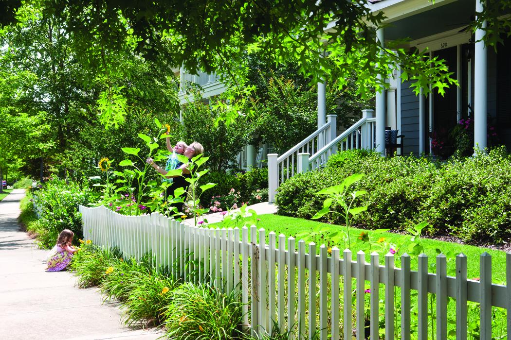 Cottage garden fence ideas for Cottage garden fence ideas
