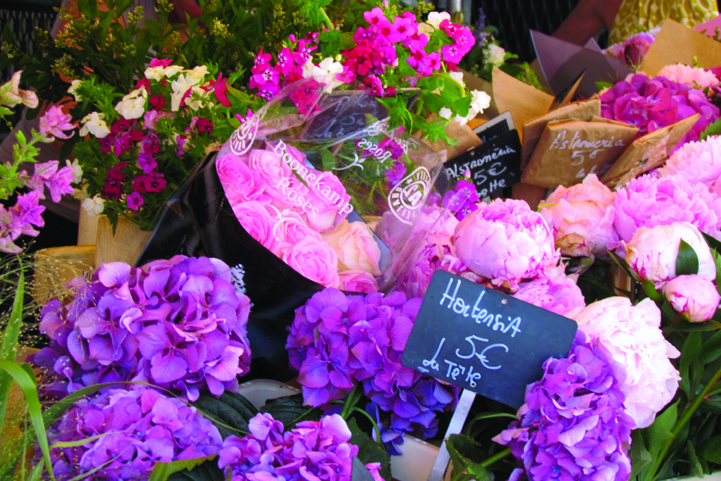 Exploring French OpenAir Flower Markets