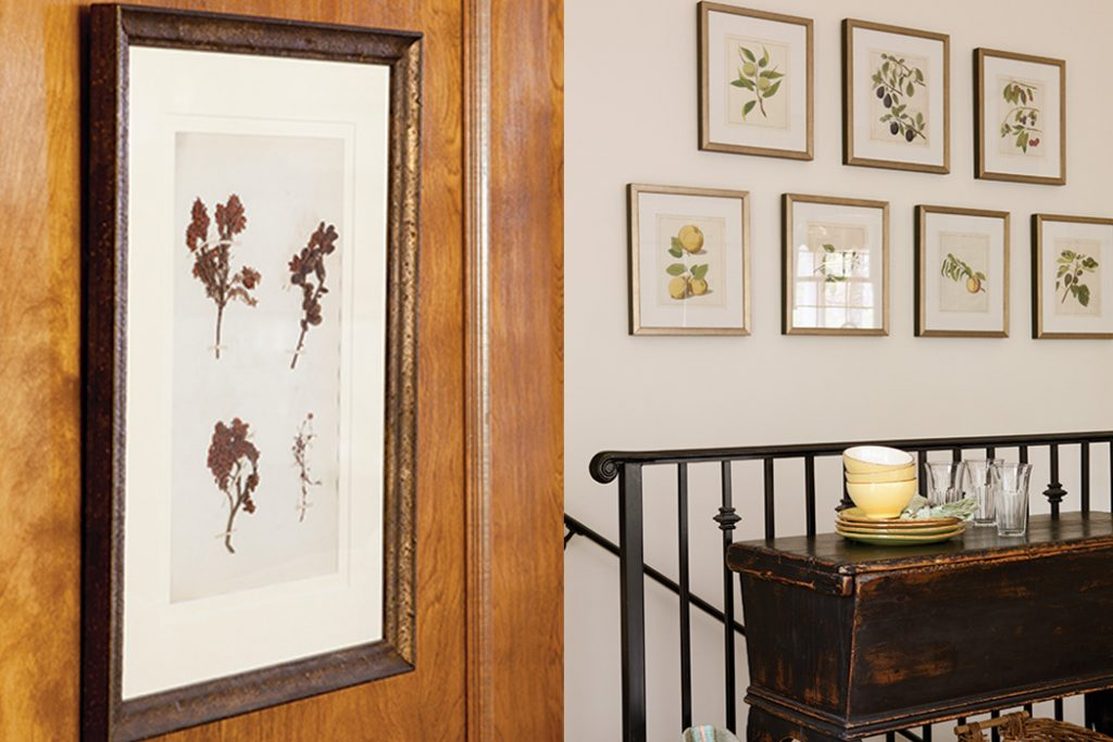 decorating with botanical prints the cottage journal