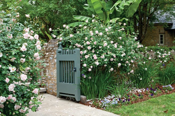 A country french garden with rooted inheritance the for French cottage magazine
