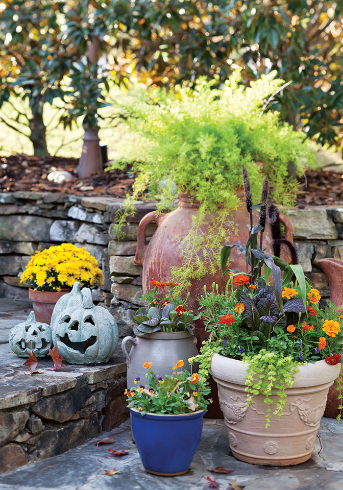 welcome-fall-pumpkins