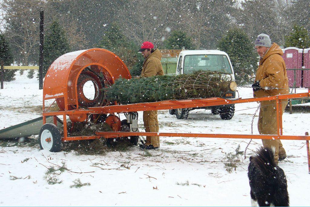 Howell-loading-tree-i-snow
