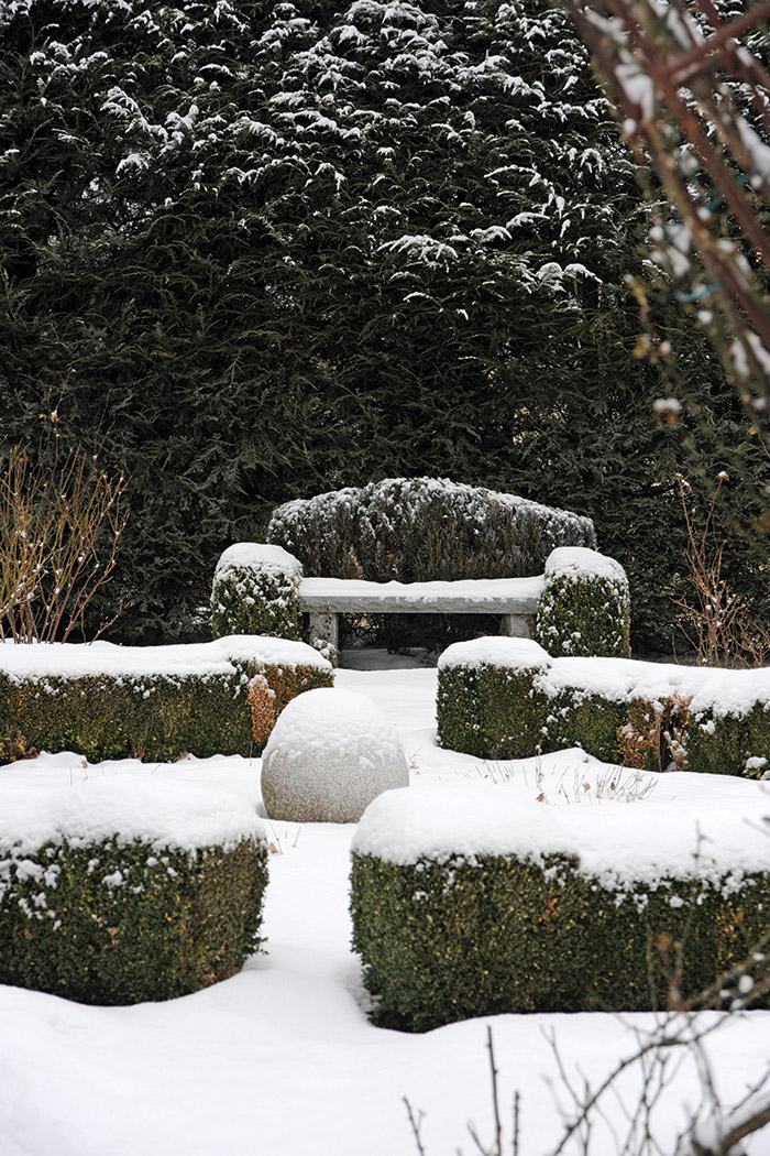 Snowy Bench and Bushes