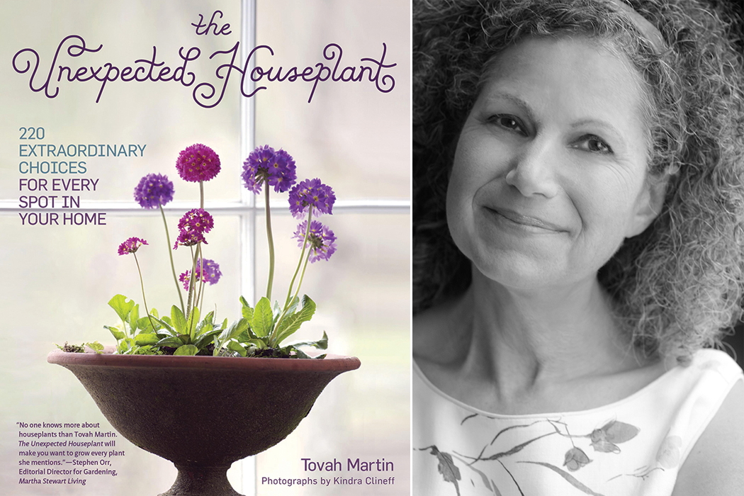 The Unexpected Houseplant Cottage Journal