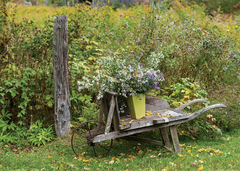 Fall Florals - Wooden Cart and Field