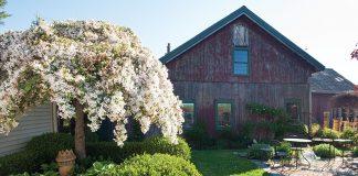 Preservation at Old Farm Nursery