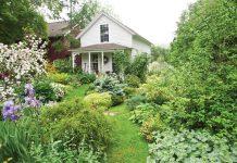 A Gardener's Garden