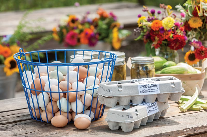 Marble Creek Farm Eggs