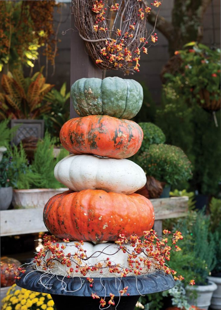 https://www.thecottagejournal.com/wp-content/uploads/2017/10/Pumpkins596SWG-731x1024.jpg