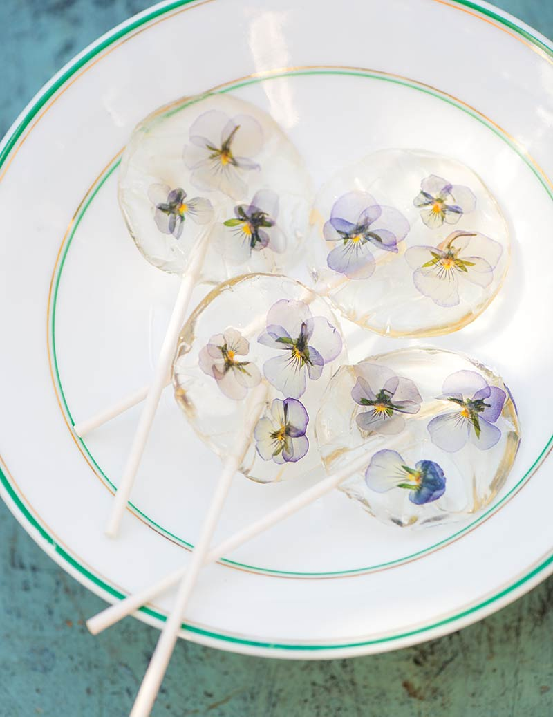 Violet lollipops