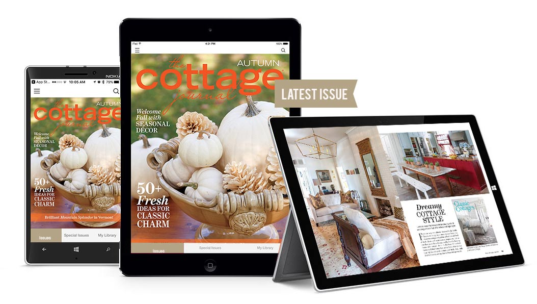 Autumn Issue Digital Preview
