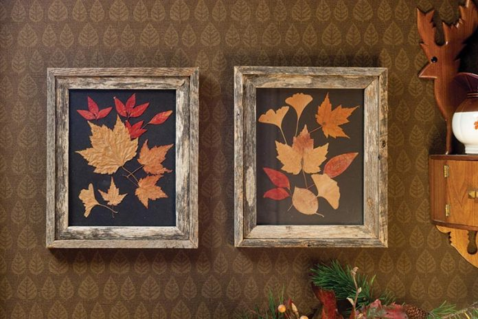 autumn decor - leaves