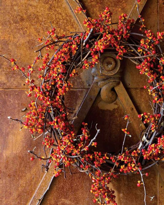 autumn decor - wreath of berries