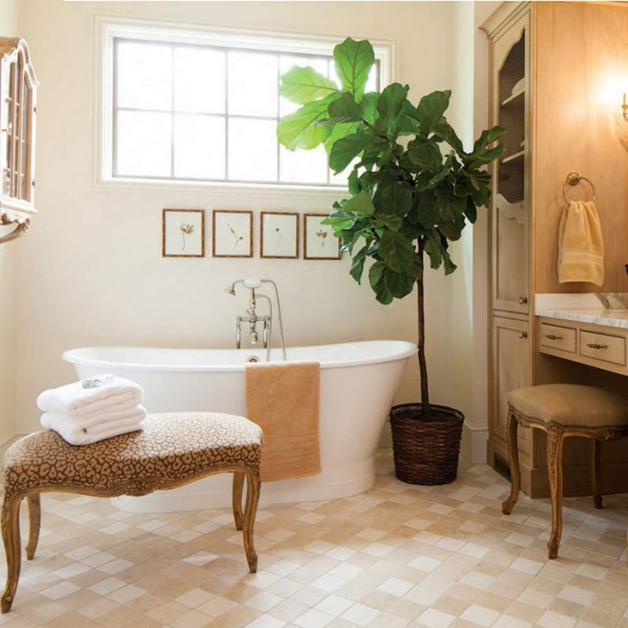 serene bathroom with large soaking tub