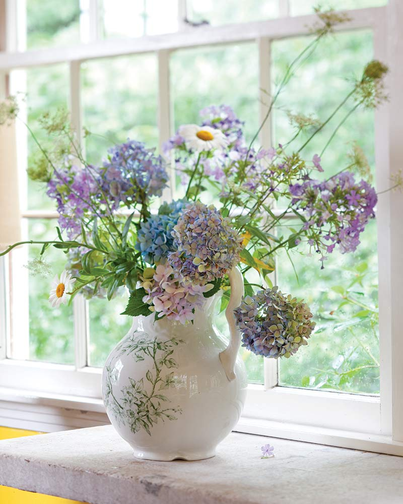 English urn and hydrangeas