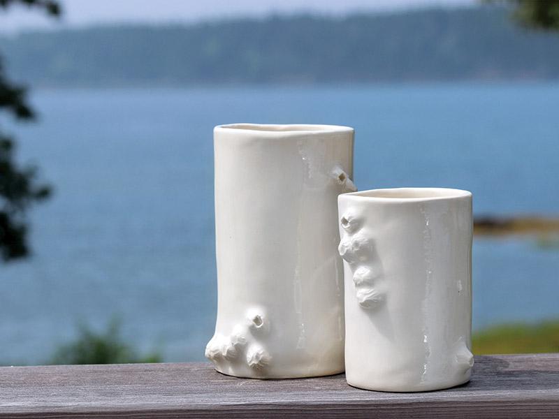 Barnacle cups