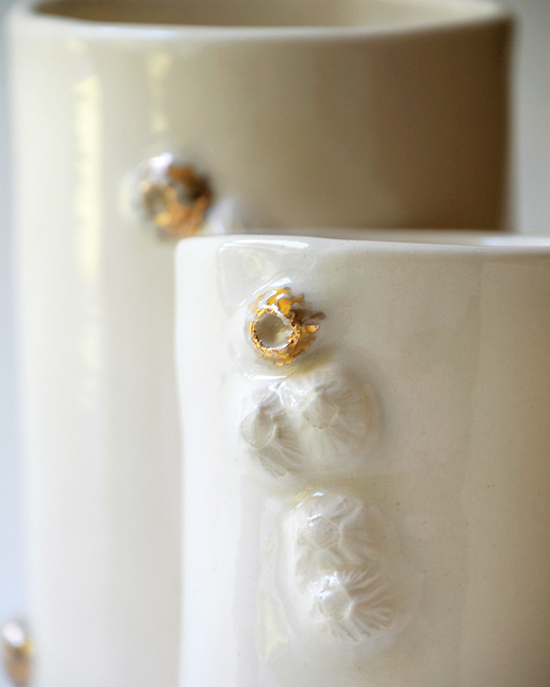 Gold barnacle cups