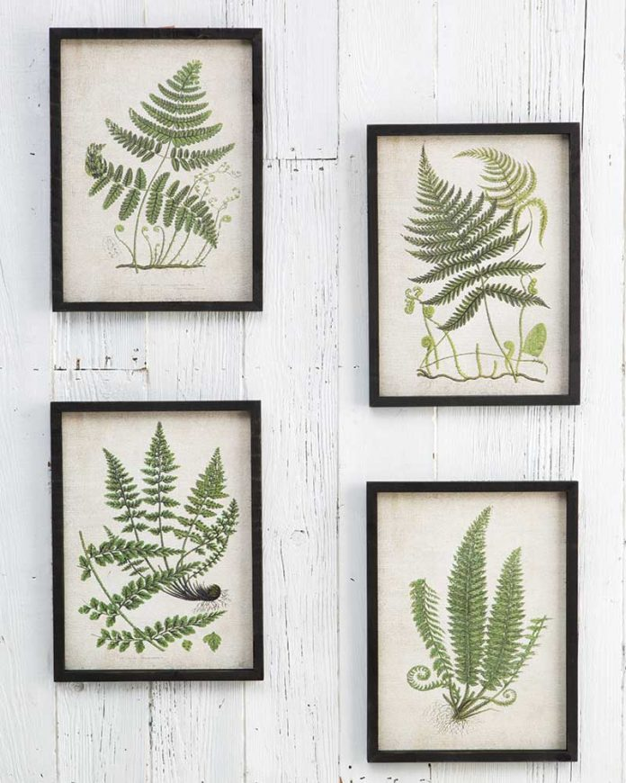 Botanical prints from World Market