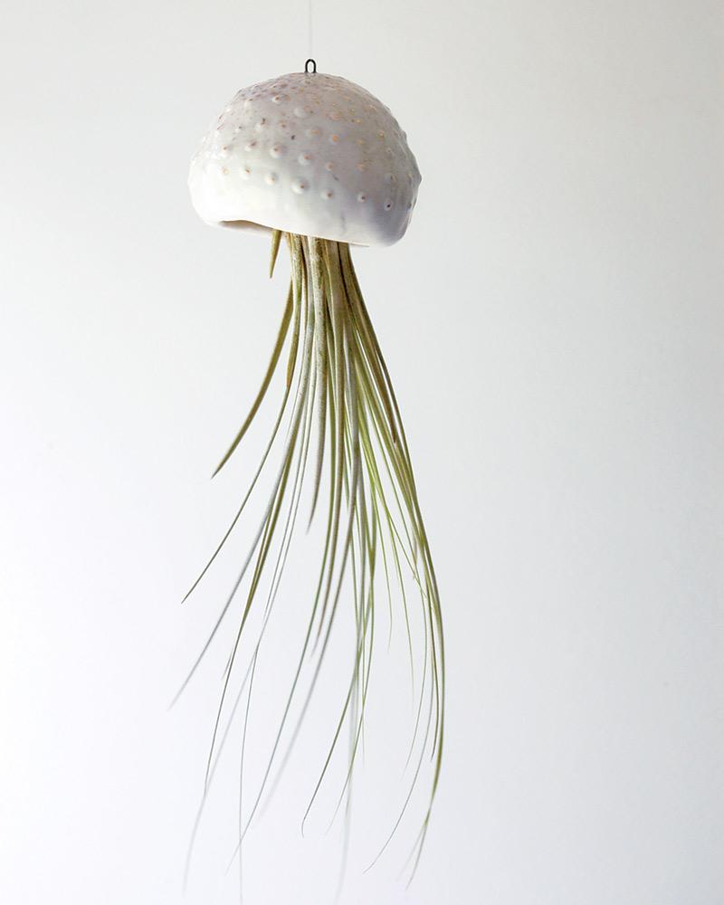 jellyfish air planter