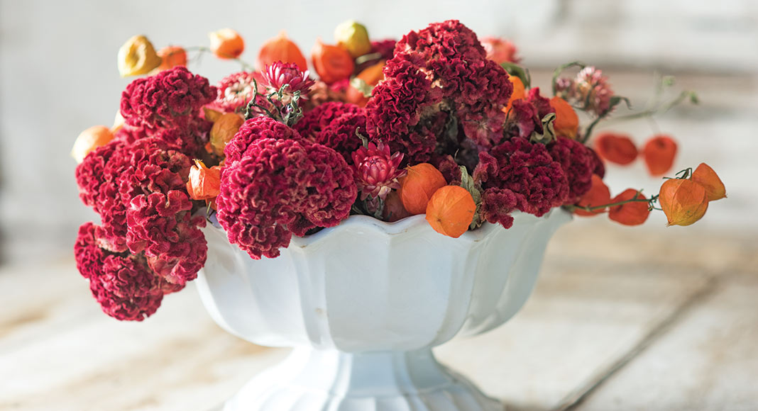 Your Complete How To For Drying Flowers This Fall Cottage Journal
